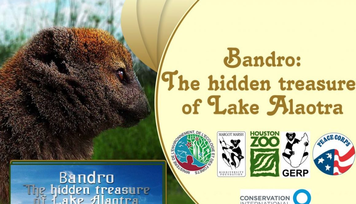 Bandro: The hidden treasure of Alaotra Lake