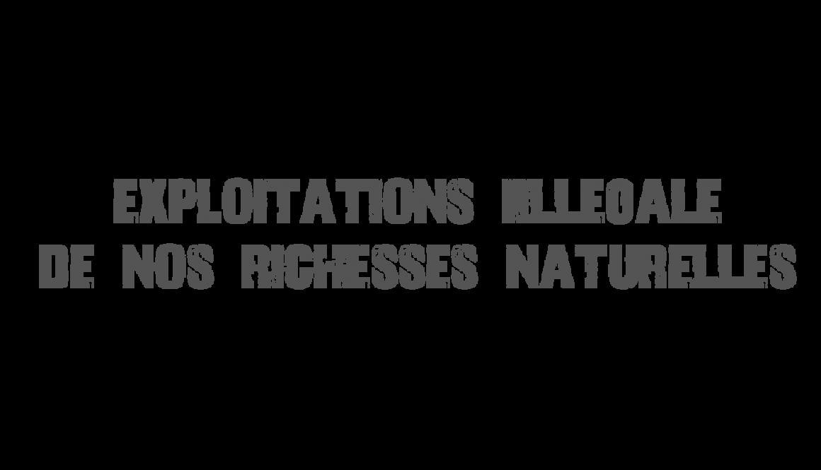Vue sur l'exploitation illégal dans le monde