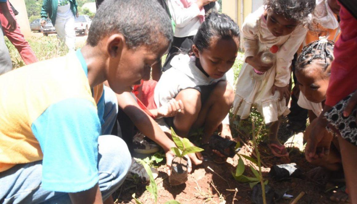 Journée Internationale des Forêts à ANGAVOKELY «Ny ala sy ny fanabeazana: mianara mitia ala»
