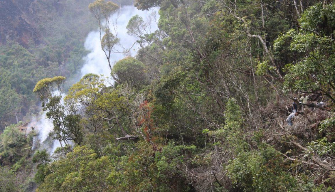 4 jours de lutte acharnée!une catastrophe écologique menaçant la forêt de Maromizaha maitrisée de justesse