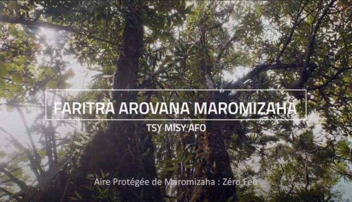 Maromizaha, un exemple de bonne pratique | 0 Feu