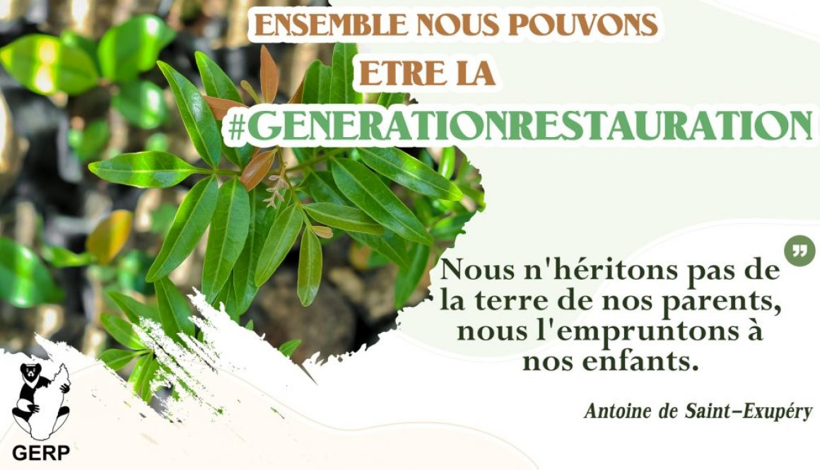 Journée Mondiale De L'Environnement 2021